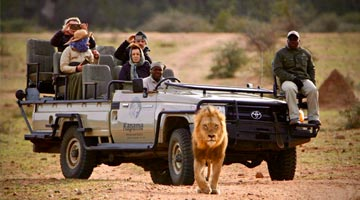 safari-sights-road-transfer-02-04