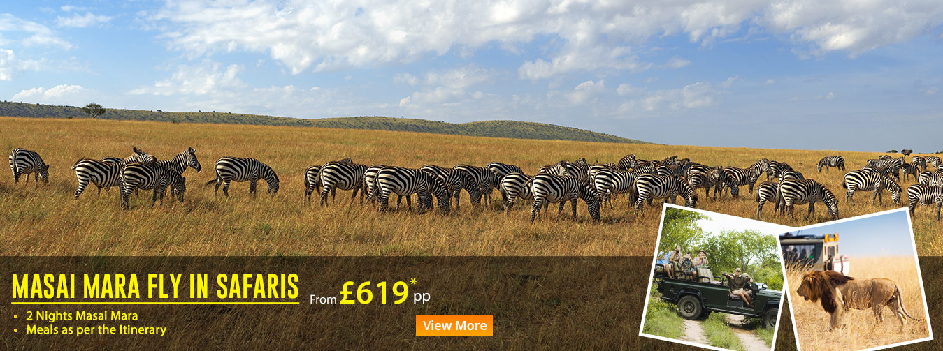 MASAI-MARA-FLY-IN-SAFARIS-v1-egion-kenya-banner